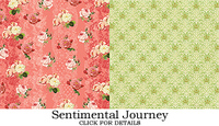 Sentimentaljourney